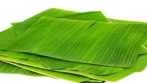 health benefist of banana leaves