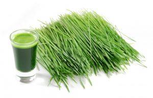 health benefits of wheatgrass tea