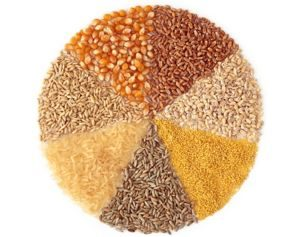 health benefits of whole grains