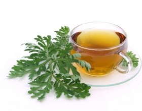 wormwood tea benefits