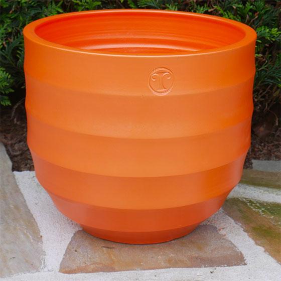 P'TIT BAMBOU  'Orange'
