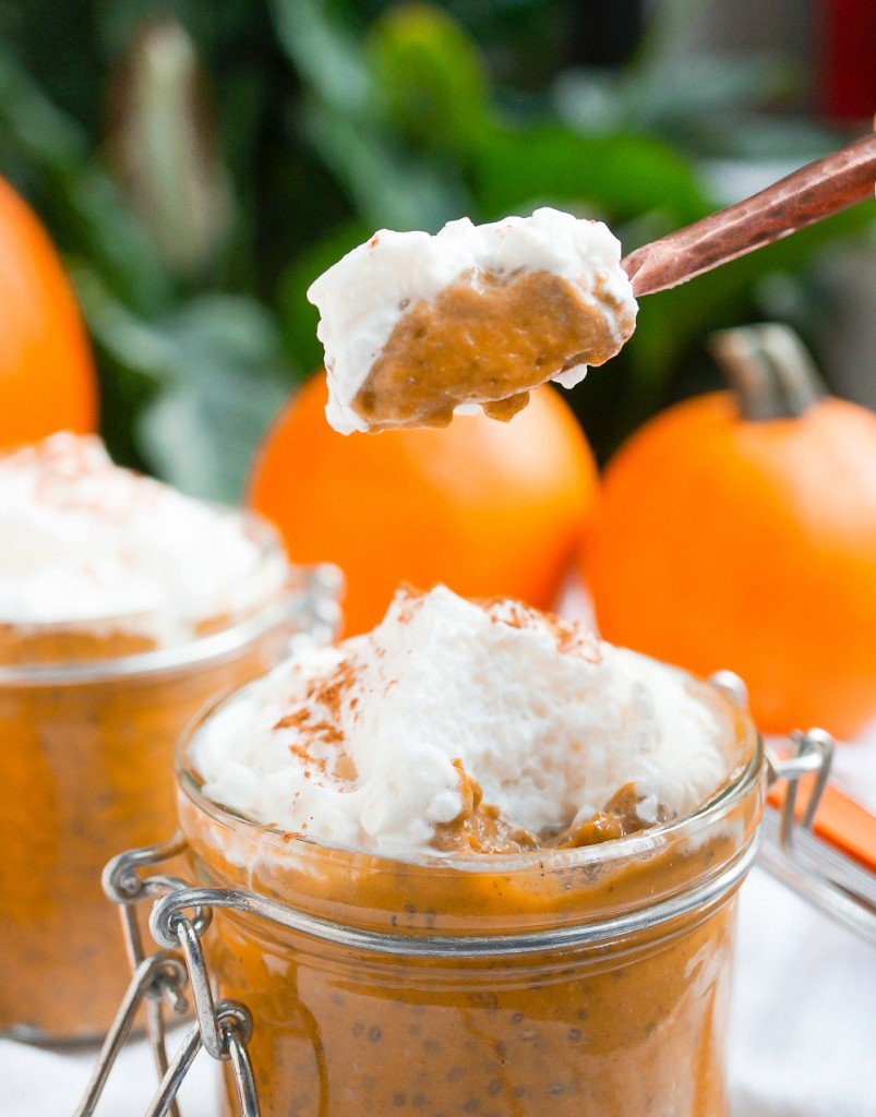 PumpkinPieChiaPudding-9