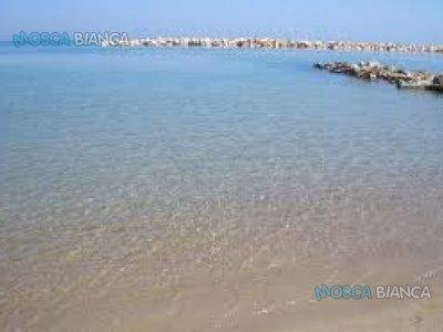 Molise, Campomarino lido appartamento affittasi vicino mare