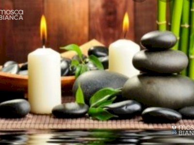 Massaggiatore Professionista, Operatore Shiatsu Diplomato IES, Massaggio Relax