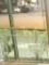 Gigolò mat (milano)