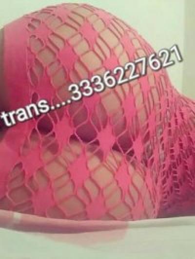 Escort Trans paloma (perugia)