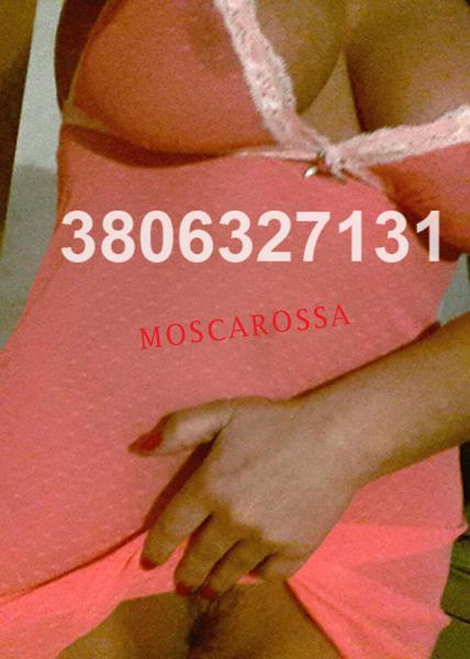 3806327131