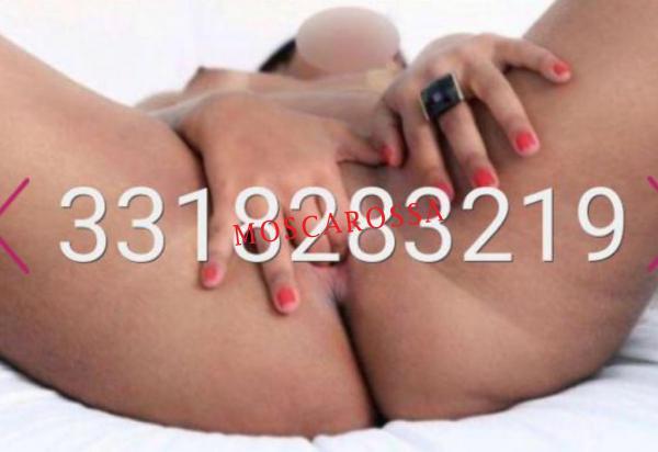 3318283219