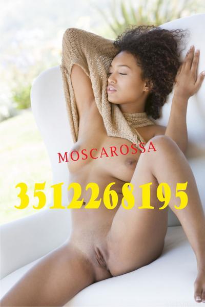 3512268195