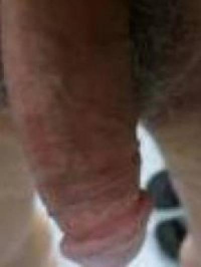 Gigolò gigi (pinerolo)