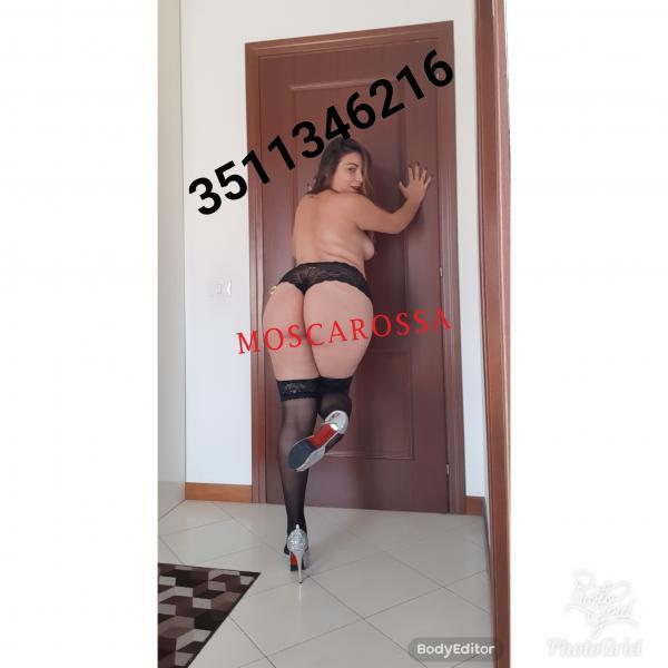 3511346216