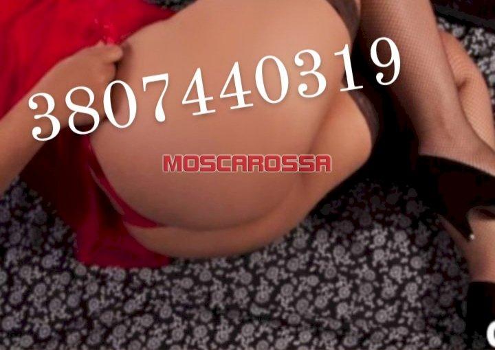 3807440319