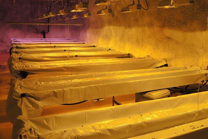 Kasvintuotantoa kaivoksessa