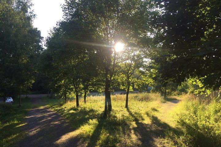 Sisäinen motivaatio ja mindfulness elämäntapamuutoksen mahdollistajina