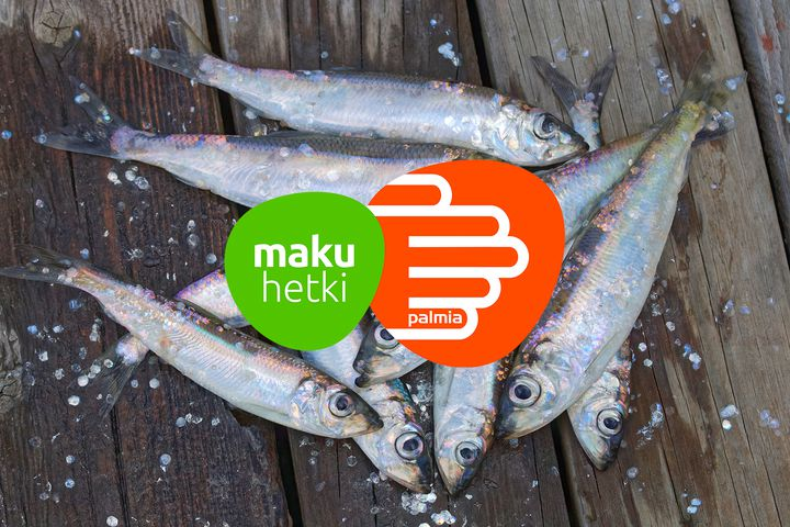Koululaisen lautaselle kotimaisista silakasta ja särkikaloista uudenlaisia kalaruokia ja lisää maistuvampia kasvisruokia / Palmia Oy