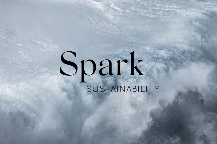 Ilmastovalmennus ryhmässä Spark Sustainabilityn kanssa