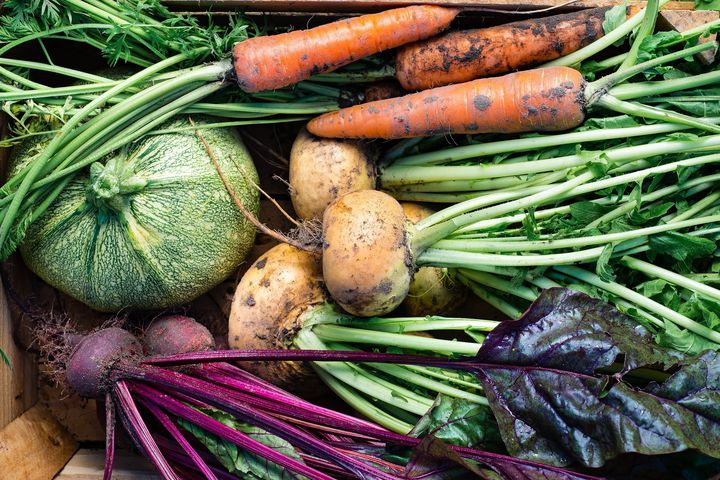 Työkalut vastuullisempien ruokapalveluiden tuottamiseen