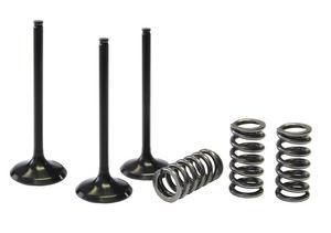 Pro X Steel Intake Valve & Spring Kit 28.SIS2424-2