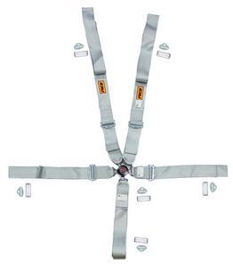 RCI Silver Gray Cam Lock 5/6 Point Platinum Series Harness P/N 9210CPL