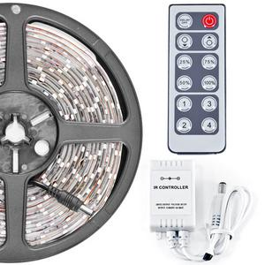 Biltek 32.8' Feet Warm White 600 LEDs Light Remote Control Dimmer Kit SMD3528 110V Plug - LED Strip Lighting Reading Strip Night Lamp Bulb Accent Waterproof 3528 SMD Flexible DIY 110V-220V