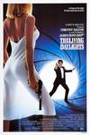 Poster for The Living Daylights.