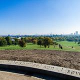 Photograph of Primrose Hill.
