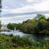 Photograph of St. James's Park.