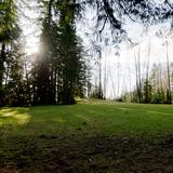 Photograph of Capilano Park.