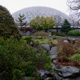 Photograph of Bloedel Conservatory.