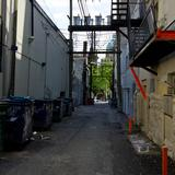 Photograph of Alley (south of Homer, west of Hastings).