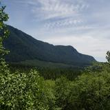 Photograph of Mid-Valley Viewpoint.