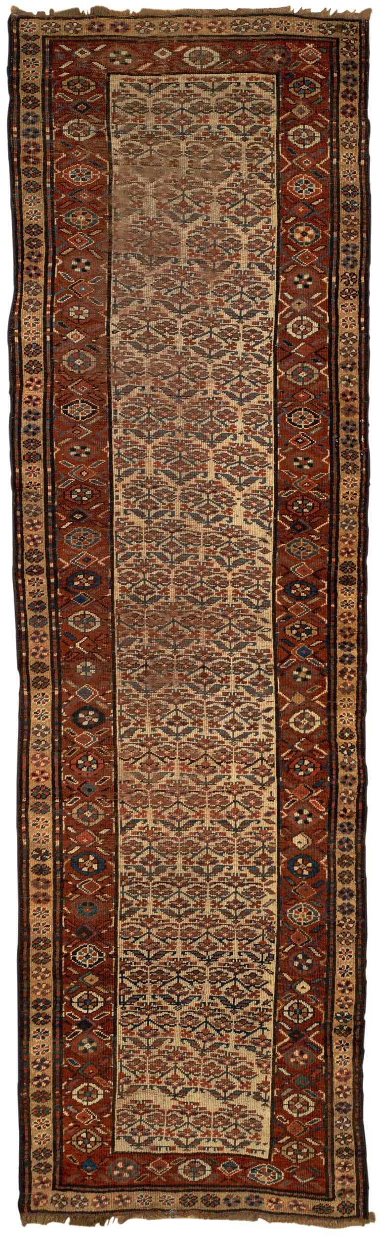 Persian Bakhshayesh 3x12