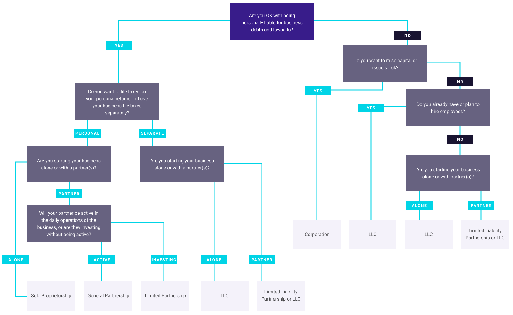 Flowchart demonstrating business structure decision-making.