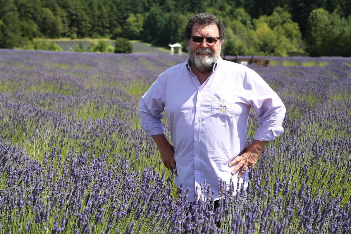 Stephen Robins, Founder of Pelindaba Lavender.