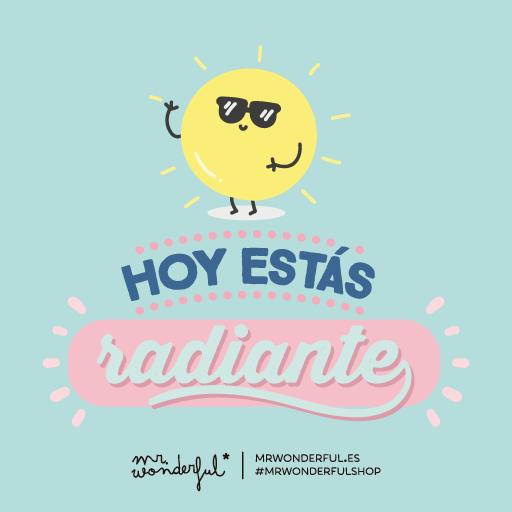 Sitio oficial de la agenda mr wonderful for Plantillas mr wonderful