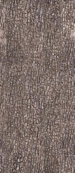 текстура дерева, кора дерева, wood texture, tree bark, textur des baumes, baumrinde, la texture de l'arbre, l'écorce des arbres, textura del árbol, corteza de árbol, trama di albero, corteccia d'albero, textura da árvore, casca de árvore
