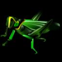 grasshopper, 128