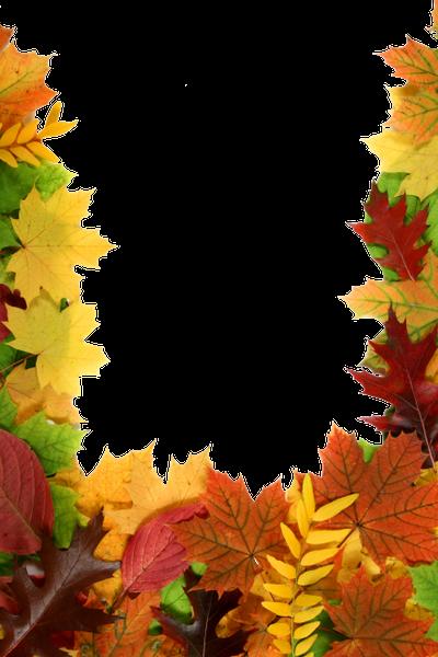 желтый лист, осенняя листва, рамка для фотошопа, осень, yellow leaf, autumn foliage, frame for photoshop, autumn, gelbes blatt, herbstlaub, rahmen für photoshop, herbst, feuille jaune, feuillage d'automne, cadre pour photoshop, automne, hoja amarilla, follaje otoñal, marco para photoshop, otoño, foglia gialla, fogliame autunnale, cornice per photoshop, autunno, folha amarela, folhagem de outono, moldura para photoshop, outono, жовтий лист, осіннє листя, рамка для фотошопу, осінь
