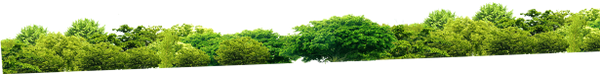 пейзаж, зеленые деревья, лес, парк, landscape, green trees, forest, landschaft, grüne bäume, wald, park, paysage, arbres verts, forêt, parc, paisaje, árboles verdes, bosques, parques, paesaggio, alberi verdi, foreste, parco, paisagem, árvores verdes, floresta, parque