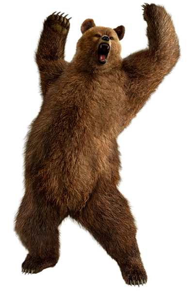 медведь, бурый медведь, злой медведь, bear, brown bear, angry bear, bär, braunbär, wütend bär, ours, ours brun, ours en colère, oso, oso pardo, oso enojado, orso, orso bruno, orso arrabbiato, urso, urso marrom, urso irritado
