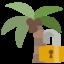 palm, lock, open