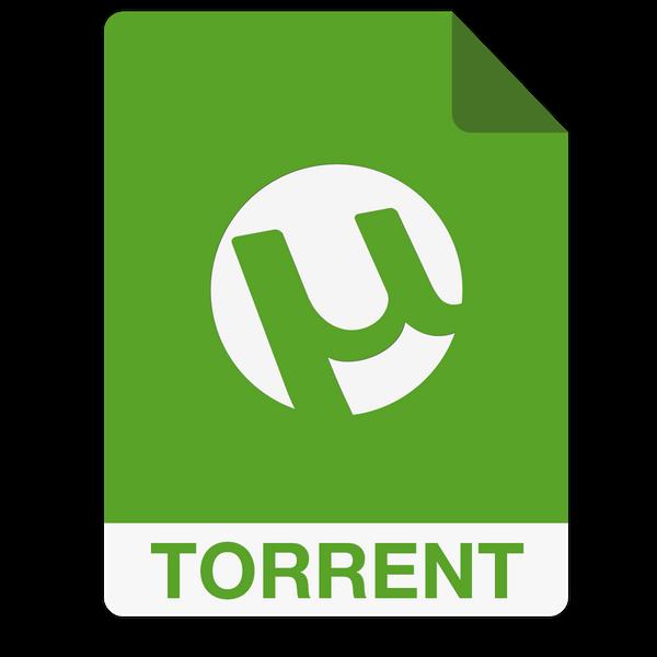 torrent file