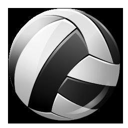 volleyball, 256