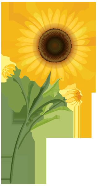 цветы, желтый цветок, flowers, yellow flower, spring, blumen, gelbe blume, frühling, fleurs, fleur jaune, printemps, flor amarilla, fiori, fiore giallo, flores, flor amarela, primavera, квіти, жовта квітка, весна