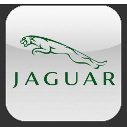 jaguar, ягуар