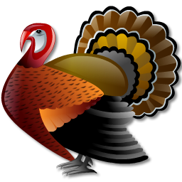 turkey, 256