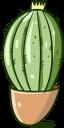 кактус, зеленое растение, колючее растение, колючка кактуса, зеленый, green plant, prickly plant, cactus thorn, green, kaktus, grüne pflanze, stachelige pflanze, kaktusdorn, grün, plante verte, plante épineuse, épine de cactus, vert, planta espinosa, cactus espina, cactus, pianta verde, pianta spinosa, spina di cactus, cacto, planta verde, planta espinhosa, espinho cacto, verde, зелена рослина, колюча рослина, голка кактуса, зелений