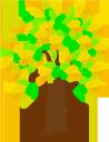 дерево, лиственное дерево, природа, зеленое растение, tree, deciduous tree, green plant, baum, laubbaum, natur, grüne pflanze, arbre, arbre à feuilles caduques, nature, plante verte, árbol, árbol de hoja caduca, naturaleza, albero, albero deciduo, natura, pianta verde, árvore, árvore de folha caduca, natureza, planta verde, листяне дерево, зелена рослина