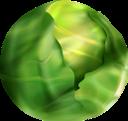 брюссельская капуста, капуста, зеленый, овощи, brussels sprouts, cabbage, green, vegetables, rosenkohl, kohl, grün, gemüse, choux de bruxelles, chou, vert, légumes, coles de bruselas, repollo, verduras, cavoletti di bruxelles, cavolo, verdure, couve de bruxelas, repolho, verde, legumes, брюссельська капуста, зелений, овочі