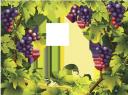 гроздь винограда, виноградная лоза, рамка для фотошопа, ягода, trauben, traube, beere, wein, rahmen für photoshop, raisins, raisin, baies, vigne, cadre pour photoshop, baya, vid, marco para photoshop, frutti di bosco, vite, cornice per photoshop, uvas, uva, baga, videira, quadro para o photoshop, виноград, гроно винограду, виноградна лоза, рамка для фотошопу